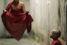 Amazing Shaolin