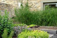 Garden...Green Walls