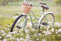 Everything Bikes / by She E