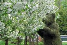 Famous and beautiful GARDENS / Garden-tuin / by Conny Vermote