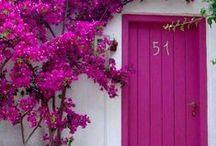 Doors & windows / by Alicia Gutierrez