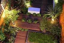 SMALL SPACE GARDEN / For Condo and apartment dwellers, inner city small spaces.