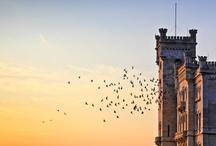 Trieste Und Mitteleuropa