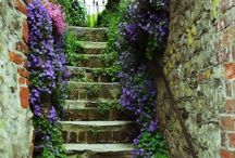 Stairs / Excelsior