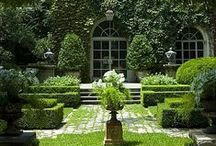 Gardens / Beautiful gardens and plants