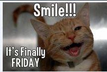 Friday/Vrijdag / Vrijdag,friday