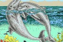A, Peixes e golfinhos.
