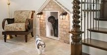 Pet-Friendly Design / A blend of Gabriel Builders designs and others that we love and admire. A house isn't a home without a pet!