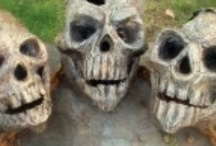Skulls!!  Can you really have too many? / by Barbara Blomer