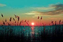 Sun aholic