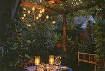 Dream Garden...