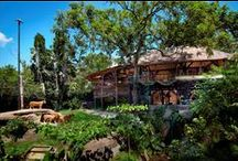 WANA RESTAURANT LOUNGE & BAR / Dine with the Wildlife   Dine just a few meters from our very own lion family enclosure, one of the most unique and wildest dining experiences on the island.