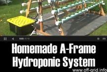 Hydro Systems / How to built a hydroponics and use the systems pins are welcome. If you pin to this board, we may move it. It will be moved to the specific subject of your pin or deleted if it is a duplicate or advertising. This board is a group board on which the community is welcome to pin. You can request the specific boards we have moved your pin and we will send it to you and we both can pin according to our common interest.  Only family friendly pins & no political, pornography, or religion pins.