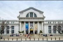 Washington DC Museums / Must visit museums in DC