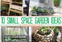 Type Small Spaces Garden / How to garden in small spaces pins are welcome. If you pin to this board, we may move it. It will be moved to the specific subject of your pin or deleted if it is a duplicate or advertising. This board is a group board on which the community is welcome to pin. You can request the specific boards we have moved your pin and we will send it to you and we both can pin according to our common interest.  Only family friendly pins & no political, pornography, or religion pins.