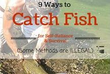 Prepper Fishing / How to fish in an emergency pins are welcome. If you pin to this board, but we may move it. It will be moved to the specific subject of your pin or deleted if it is a duplicate or advertising. This board is a group board on which the community is welcome to pin. You can request the specific boards we have moved your pin and we will send it to you and we both can pin according to our common interest.  Only family friendly pins & no political, pornography, or religion pins.