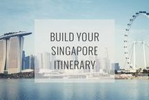 Singapore Attractions / Dynamic and diverse, Singapore captivates with its futuristic architecture, breathtaking vistas and spectacular plant life, from hybrid orchids to solar-powered Supertrees.