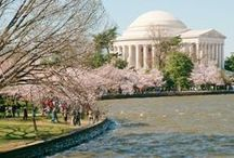 Spring Travel / From the Cherry Blossoms in DC to a stroll along the Brooklyn Bridge - this is the ultimate list of spring travel activities.