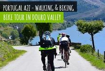 Biking Tour in Douro Valley