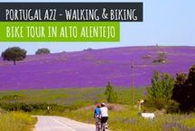 Bike Tour in Alto Alentejo