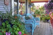 Outdoor living / Outdoor living, front and back verandah decor, pots & gardening.