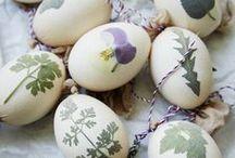 Frohe Ostern! / Hier findet ihr Inspiration zum Osterfeste! Tolle Rezepte, Deko- und DIY-Ideen rund um Ostern.