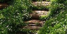Waldgarten / Verwunschener und verspielter Gartenteil im Bagua 7