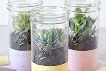 Kreatives aus Blumen & Pflanzen
