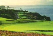 Golfing on Maui