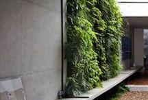 Architecture • Green