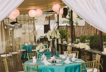 Cabo Villas Beach Resort and Spa / Wedding planner Luba Ponce ( wedding assistan  Illeana Reyes  credits to Romantic Cabo Weddings