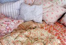 Sleep / Bed