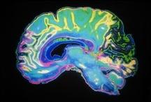 Psychiatry and Brain Health / by Stukley Grace