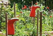 Home Harvest & Kitchen Gardens xx
