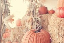 Fall in the Valley / Fall decor and recipe inspiration!