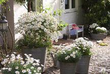 Cosy veranda, garden, balcony ideas!!