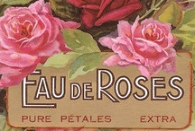 Vintage Perfume and Soap Labels