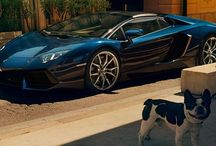 Cars / 車