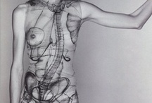 Corps étranges / mutations corporelles, art corporel, déguisements, peau, tatouages, prothèses, membres...