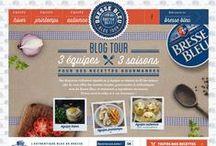 Bresse Bleu Blog Tour 2014-2015