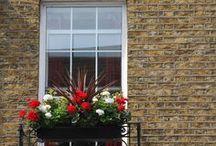 """Английские окна / Путешествие в Великобританию вылилось в подборку фотографий """"Английские окна и цветы"""""""