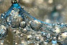 Drops / drops of water