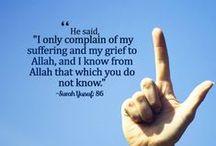 Ayaats (Verses from Qur'an)