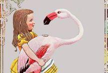 *Sweetsubela* Flamingo