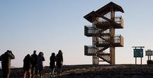 Mazury Birdwatching Towers / Design: 2013 | Construction: 2014 | Client: Masurian Landscape Park | Location: Łuknajno Lake Area, Mazury, Poland | Authors: VGR-Architecture Studio + Krystian Kwieciński