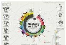 Infographics / by akbar