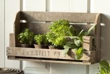 HOME: Garden / Charming Greens