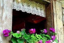pencere çiçekleri windows bokses