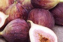 figs ------incir