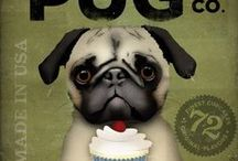 """Pug'n Love / The breed is often described as multum in parvo, or """"much in little"""", alluding to the Pug's remarkable personality, despite its small size. Pugs are strong willed but rarely aggressive."""